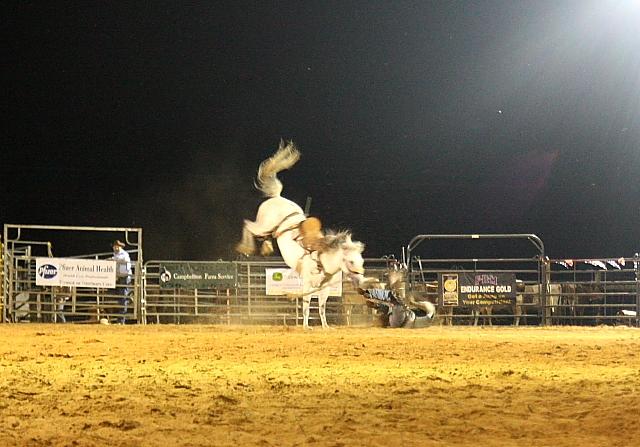 cowboyoff