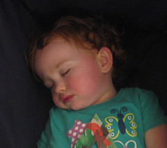Speck asleep in the stroller at 27 months