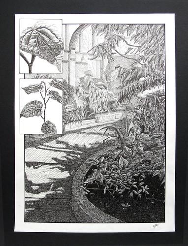 DRWF125-Botanical-IMG_2964