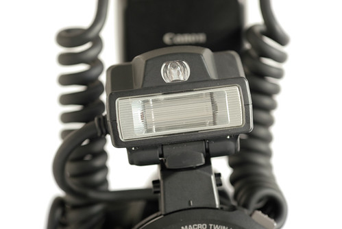 MT-24EX flash head