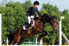 DSC00242-p (Myprofe) Tags: horse caballo jumping salto horsejumping hipica sequestrian saltosdecaballo clubdecampovillademadrid ccvm madridcountryclub
