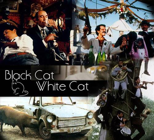 Gato Negro, Gato Blanco de Emir Kusturika
