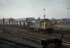 Class 37 Doncaster 28/10/77 (Stapleton Road) Tags: class37 mgr doncaster trains englishelectric diesel locomotive vulcanfoundry railway works depot 37020