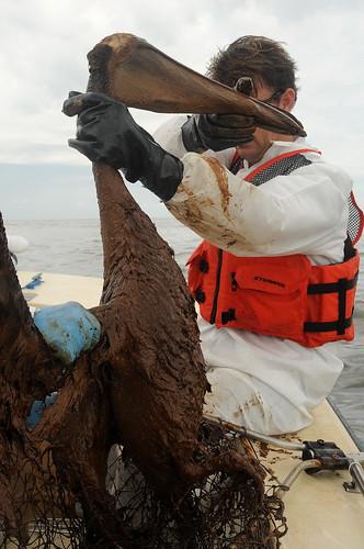 Разлив нефти в заливе: соперники BP утверждают, что катастрофы можно было избежать.