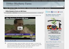DiMeo Blueberry Farms