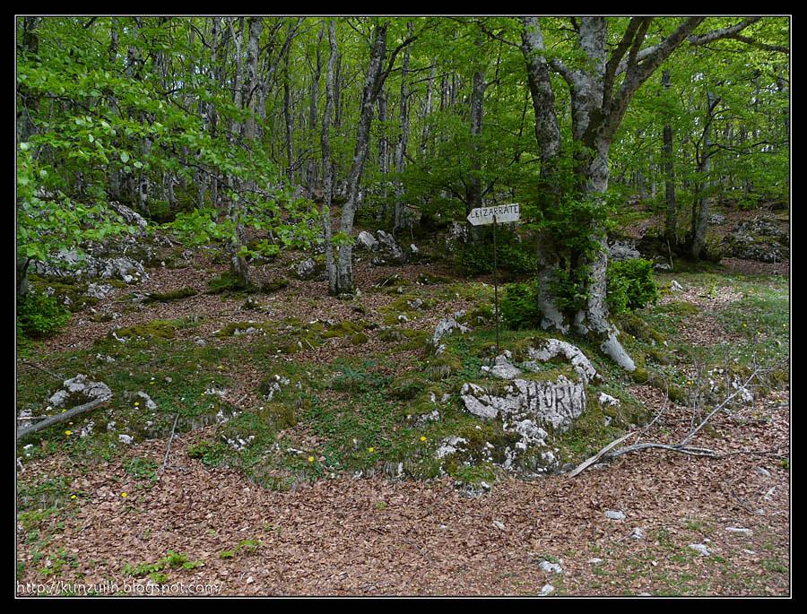Aizgorri_162326
