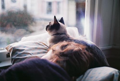 Hannah & Kitten