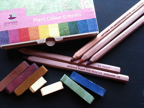plant pigment media (week 4)
