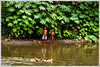 Deep inside the memory forest  [..Chuadanga, Bangladesh..] (Catch the dream) Tags: boy plants reflection green nature water girl smile leaves rural forest children design pond pattern ripple rustic ducks shrubs bangladesh chuadanga repeatation alamdanga ailhash gettyimagesbangladeshq2