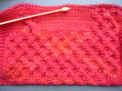 Celtic Critter Cardigan swatch