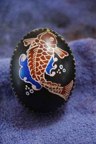Koi-egg