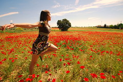 Libera tu alma / Free up your soul (pasotraspaso) Tags: sky espaa naturaleza nature landscape libertad freedom countryside spain europa europe sara spirit alma free sigma paisaje andalucia cielo soul poppies campo felicidad andalusia 1020 espace gettyimages hapiness quietness espacio tranquilidad amapolas espiritu libera vivir nikond80 flickraward gettyvacation2010 gettyimagesspainq1