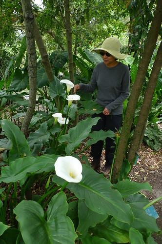 Botanical Garden - Quito, Ecuador