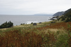 Coastal Meadow (barachois50) Tags: fall ferns grosmornenationalpark westernnewfoundland greengardenhike