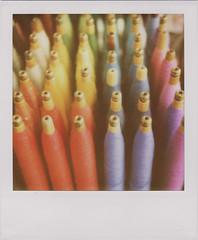 Polaroid_20100514-3