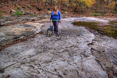 Alexis Lienhart, Chert formation, Roaring River Falls area, Overton Co, TN (Chuck Sutherland) Tags: county dog tn fort tennessee formation area limestone athena hdr payne roaringriver overton chert dryriverbed fortpayneformation alexislienhart chertboxwork