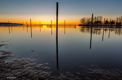 Sunrise over the flooded volleyball nets of Woodbine beach (Phil Marion) Tags: philmarion travel beautiful cosplay candid beach woman girl boy teen 裸 schlampe 懒妇 나체상 फूहड़ 벌거 벗은 desnudo chubby fat nackt nu निर्वस्त्र 裸体 ヌード नग्न nudo ਨੰਗੀ голый khỏa جنسي 性感的 malibog セクシー 婚禮 hijab nijab burqa telanjang обнаженный عري nubile برهنه hot phat nude slim plump tranny cleavage sex slut nipples ass xxx boobs dick tits upskirt naked sexy bondage fuck piercing tattoo dominatrix fetish