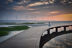 日暮高美 Dusk in Kaomei Wetland (Vincent_Ting) Tags: 高美 高美濕地 台中市 清水 夕陽 sunset 夕彩 clouds wetland windmill 風車 windturbine 剪影 silhouette 日落 黃昏 台灣 taiwan formosa sky water 倒影 reflection 火燒雲 霞光 seaside sea beach colorfulbeach 風力發電 星芒 雲林莞草 高美木棧道 jetty crepuscularrays vincentting
