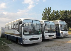 Genesis Line Ups (Api IV =)) Tags: santa bus transport rosa mini service genesis sr fare inc ordinary jinbei jbc gtsi 818295
