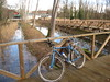 bici sulle risorgive