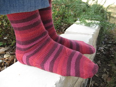Cochineal Arch Shaped Socks