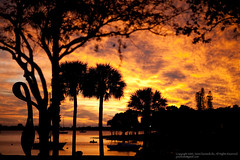 Fiery Sunset (SemiCharmedLife ()) Tags: sunset florida sarasota islandpark sooc ofcourseiexportedtherawtosrgbjpeg