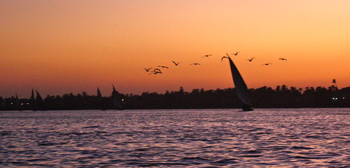 Luxor - Nile Sunset - 80