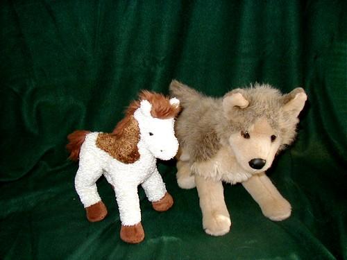Douglas Pony & Friend