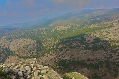 Israel - Golan Heights - Nimrod - 21