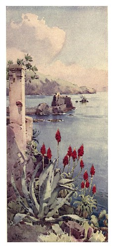 015- Aloes rojos en Madeira-The flowers and gardens of Madeira - Du Cane Florence 1909