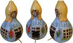 CASINHA DE PASSARINHO (BILUCA ATELIER) Tags: gourds calabazas pinturacountry porongos casinhadepassarinho biluca pinturaemcabaa pinturaemporongo bilucarecortes