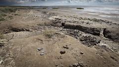 The Peat Coast, Terschelling 2009 (ceesmaas) Tags: sea brown holland netherlands dutch terschelling waddenzee landscape coast peat coastal maas cees ceesmaasnet