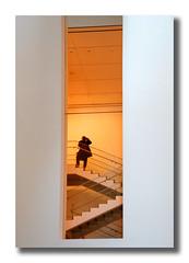 NYC (Luca Castillo) Tags: nyc usa newyork museum architecture stairs arquitectura photographer moma museo escaleras fotografo nuevayork candidshot eeuu robado