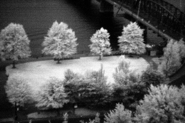 willamette infrared