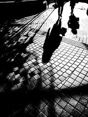 20100124_oomiya_07 (pqw93ct) Tags: light shadow bw white black monochrome japan saitama ricoh 埼玉 モノクロ 白黒 oomiya 大宮 光と影 gx200