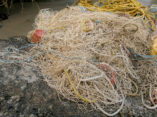 Fisherman's net