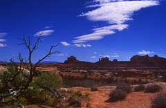 Canyonlands (Peter Femto) Tags: sky panorama usa mountains nature clouds america landscape utah nationalpark bush sandstone natur scenic himmel wolken bluesky canyonlandsnationalpark redrocks geology amerika viewpoint ste landschaft sandstein felsen southwestusa nikonf801 sediments overtheexcellence woodenshoearch theneedlesdistrict
