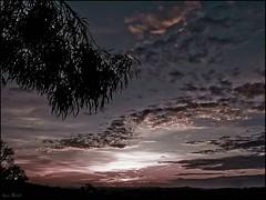 Invitation au voyage (Agns Willette (noushka7)) Tags: nature rose champs violet ciel nuages paysage couleur contrejour coucherdesoleil ombres plaine gers sudouest midipyrnes feuillage soleilcouchant panasonicfz28 cratitudesnolimits