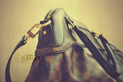 (- M7D . S h R a T y) Tags: handbag luxury lv louisvuitton wordsbyme louisvuittonhandbag allrightsreserved dedicationnotexpected