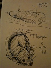 I need to follow puppy examples & go to bed #hourlycomicday