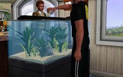 Pack de los Sims 3 4321406726_c68aa8b108_m