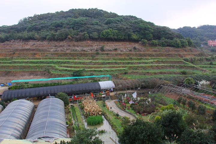 三芝番婆林花園(花卉、醬菜)0016