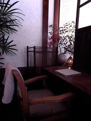 ▼野菜cafe 廻|meguri
