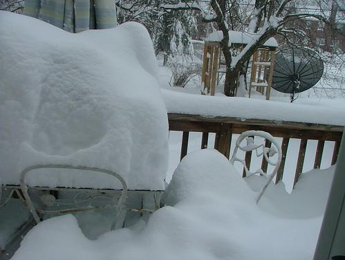 February 2010 snow 049