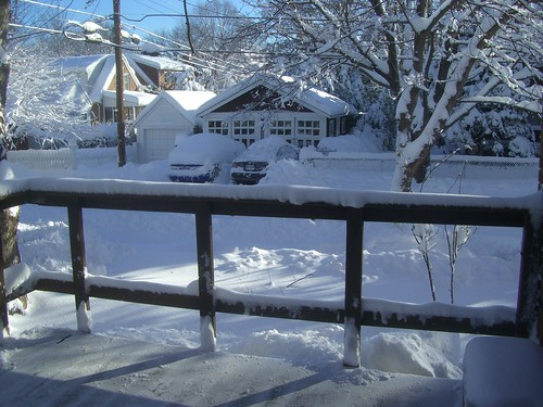 The view of snow in my backyard from my deck