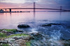 Forth Road Bridge (Surely Not) Tags: road uk bridge sea water scotland nikon rocks edinburgh long exposure south forth queensferry d700 yourphototips