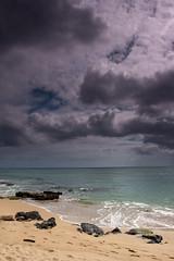 Wailua Beach (IanLudwig) Tags: sunset canon hawaii coast pacificocean kauai kalalau napali hawaiitrip bigislandhawaii hawaiibeach triptohawaii canon1740l konacoast kauaihawaii hawaiivolcano konahawaii hawaiisunset hawaiiisland kauaibeach tmba kauaiisland hawaiitour hawaiibeaches 40d hawaiiactivities kauaitravel hotelhawaii condohawaii kauaibeachresort hawaiiresort surfhawaii hawaiihilo hawaiikona canon40d hawaiihotels hawaiimap hawaiiluau kauaicondo hawaiiweather hawaiiattractions stealingshadows hawaiiair kauaitours visithawaii hikauai hawaiiresorts kauaihotel miasbest hawaiitours daarklands flickrvault kauairental thingstodohawaii kauaihotels vacationrentalskauai hawaiiinformation kauaiweather hawaiiaccommodation flighthawaii hawaiiholidays condoshawaii hawaiitrips kauaicheap kauaimap resortkauai vacationrentalshawaii