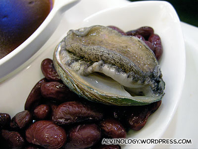 Live, moving abalone on display