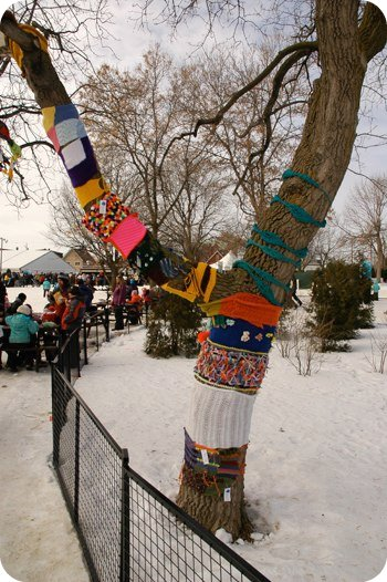 tree cosies at Jacques Cartier Park