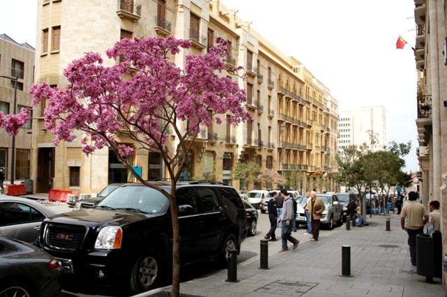 Beirut (8)
